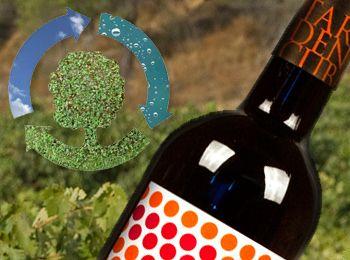Tardencuba apuesta por el vino ecológico